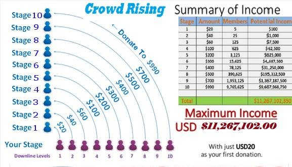 crowdrising chart
